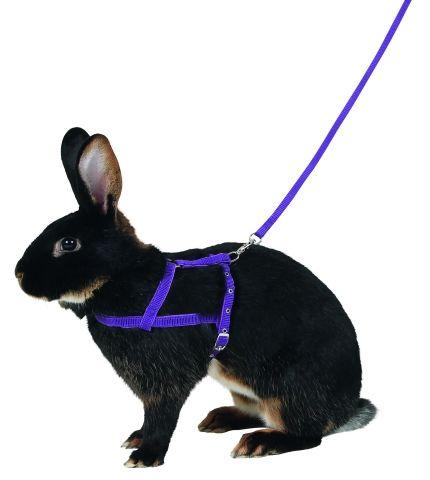 Postroj pro králičí agility, králičí hop L Kerbl