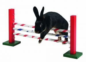 Agility pro králíky Jednoduchá překážka