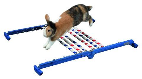 Agility pro králíky Kombinovaná překážka