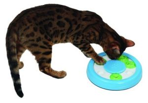 Inteligentní hračka pro kočky Paw
