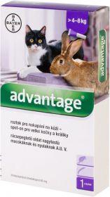 Advantage spot-on kočka, králík nad 4kg 0,8ml