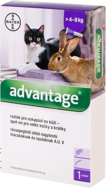 Advantage spot-on kočka, králík nad 4kg 0,8ml Bayer