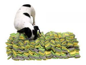 Hrací kobereček na pochoutky