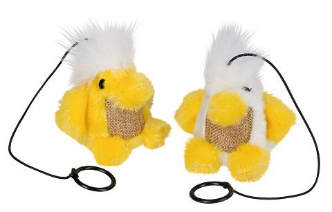 Ptáček Chico Kerbl