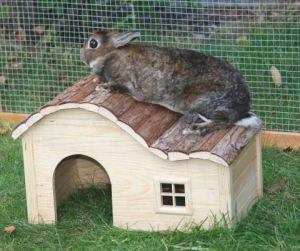 Domek Nature se zaoblenou střechou malý