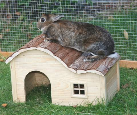 Dřevěný domek Nature se zaoblenou střechou,velký