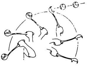 Vrhač míčků Maxi Speed s tenisákem