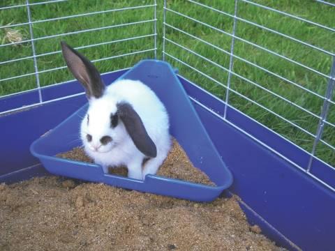 Záchod pro králíky rohový