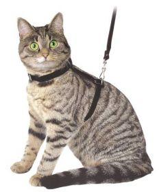 Postroj kočka 12mm/120cm černý