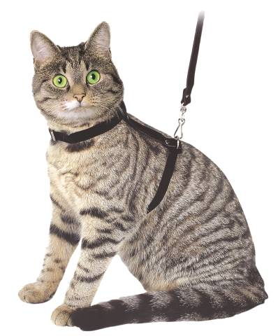 Postroj kočka 12mm/120cm černý Kerbl