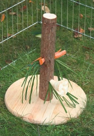 NATURE krmné místo,strom