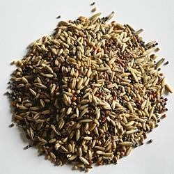Apetit - Lesní zpěvné ptactvo 25kg, základní krmná směs pro venkovní ptáky (LZP)